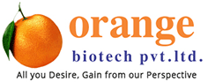 Best PCD Pharma | Pharmaceutical Franchise Company in India